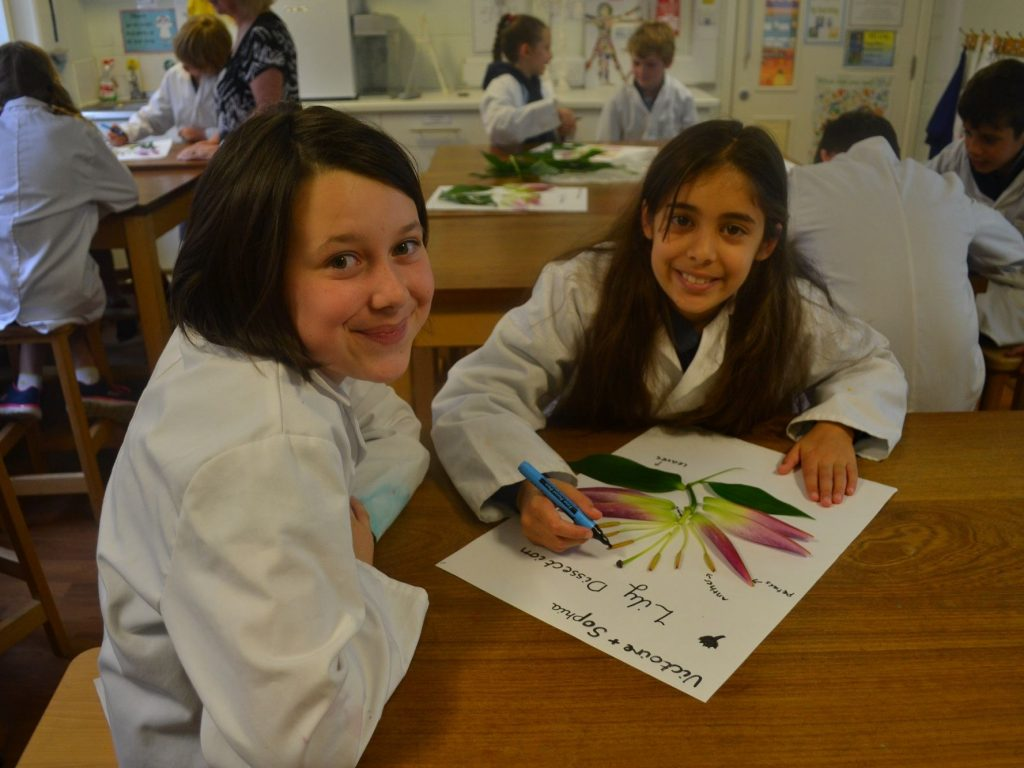 Lilies-science-Parsons-Green-Prep-School-Fulham-SW6-London-UK-teaching-education-learning-independent