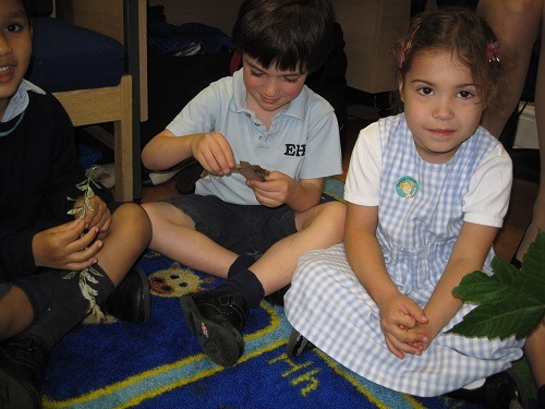 Reception-Parsons-Green-Prep-School-Fulham-SW6-London-UK-teaching-education