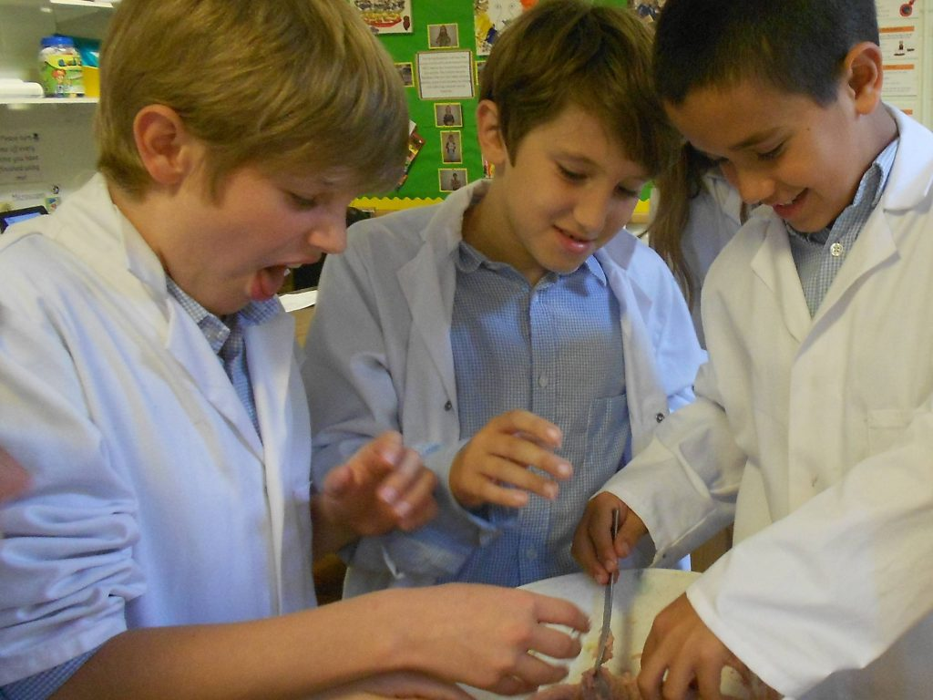 STEM-club-science-Parsons-Green-Prep-School-Fulham-SW6-London-UK-education-teaching-1