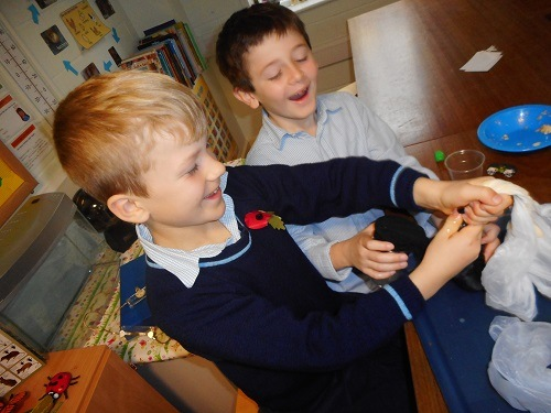 Science-digestion-animals-Parsons-Green-Prep-School-Fulham-SW6-London-UK