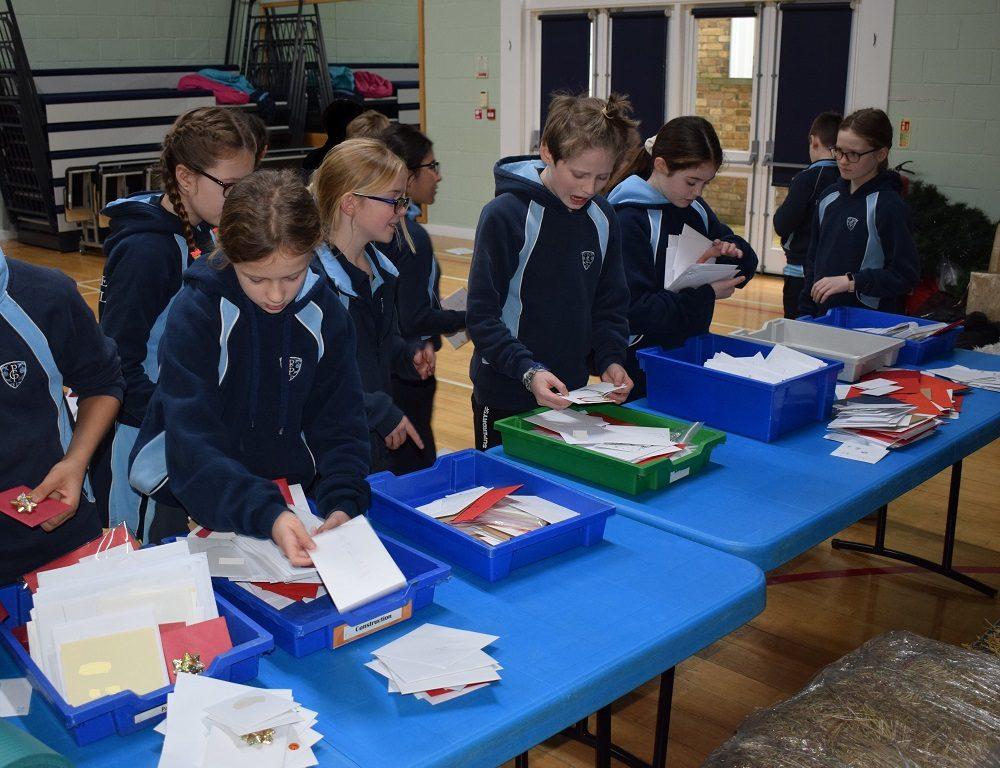Children sorting through Christmas Cards