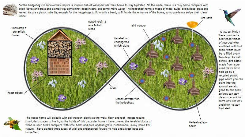 Parsons Green Prep School Biodiversity Poster