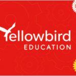 Yellow bird Education Half Term Workshops Banner